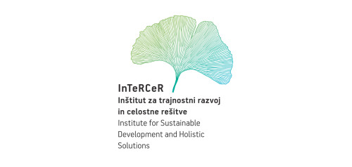 Institute for sustainable development and holistic solutions